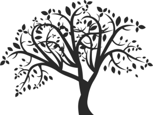 tree-701968_640