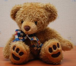 Teddy_Bear_90_flash